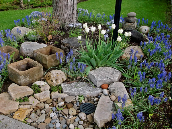 Shade sustaining beauty for Rock garden designs shade